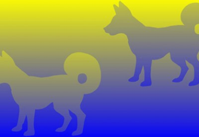 sja blog deception Color Dogs with background 150302